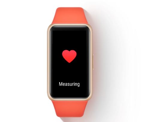 24Hr Heart rate monitoring