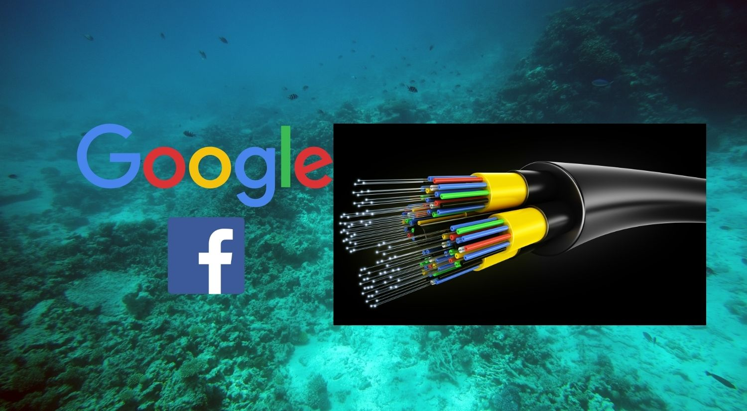 Google Facebook Subsea cable Apricot Project Asia